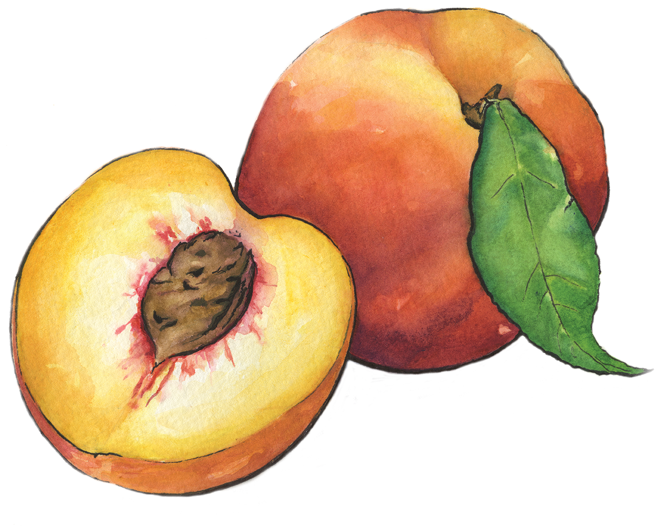 Peaches pictures strip pics 16